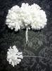 Тычинки Тычинки TYCH1-1 (белый)