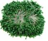 Тычинки KT-18 (зеленый) Цена за 1000 шт